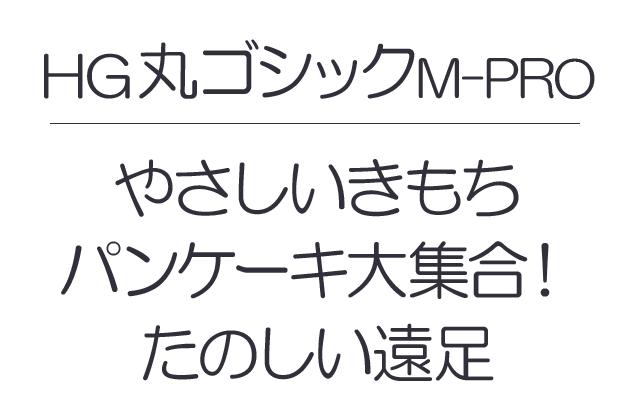 HG丸ゴシックM-PRO
