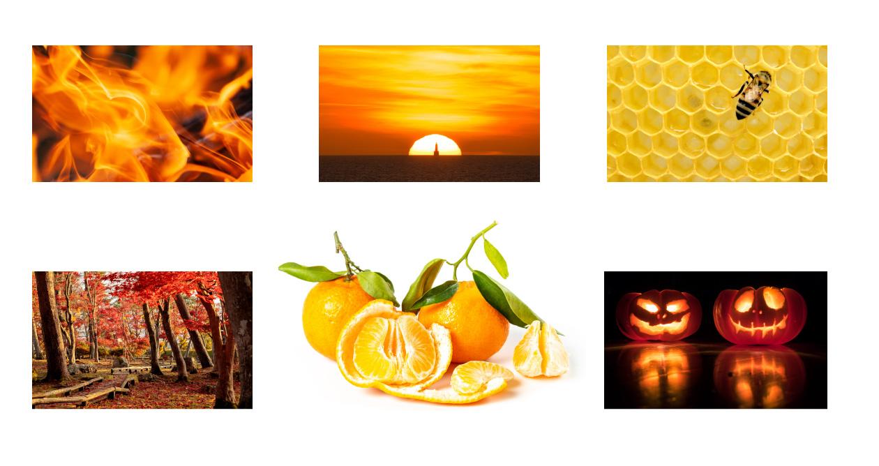 オレンジから連想するもの