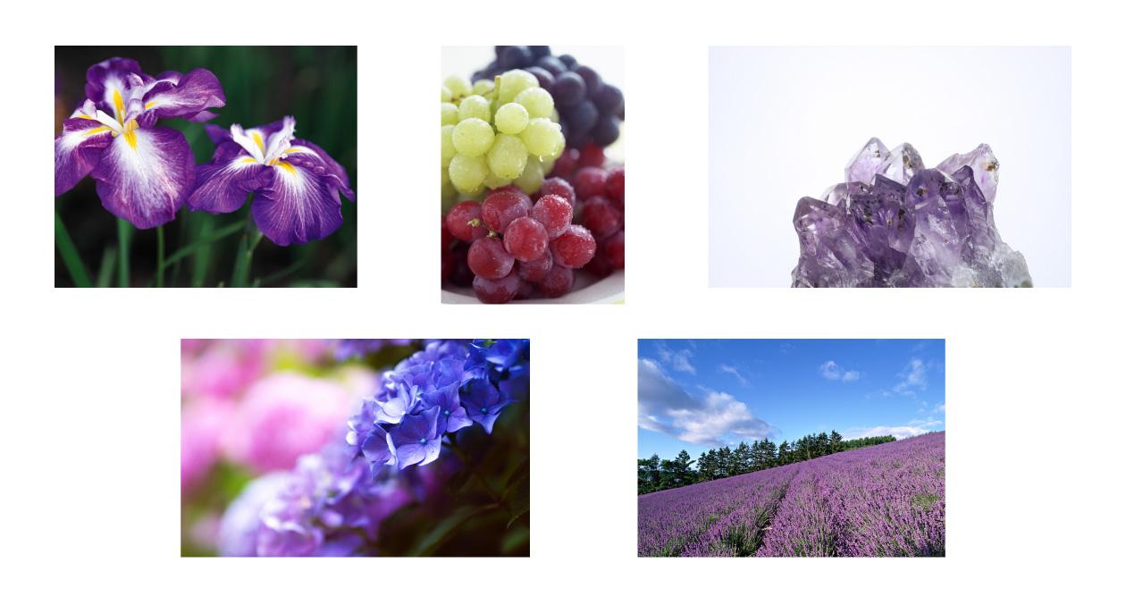 紫色から連想するもの