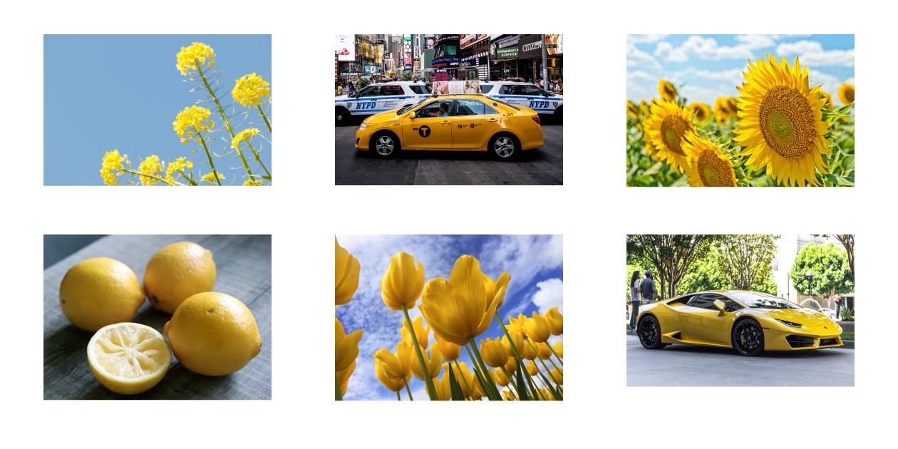 黄色から連想するもの